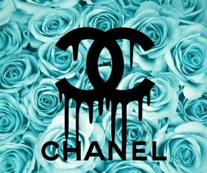 chanel, blue, and rose image
