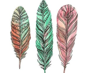 feather, pink, and colors image