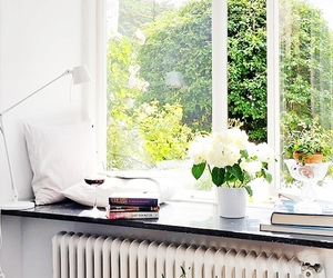 window, flowers, and white image