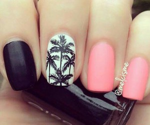 black, palm, and style image