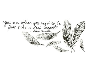 feather, once upon a time, and quote image