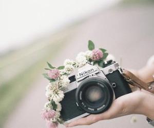 camera, flowers, and nikon image