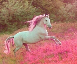 pink, horse, and unicorn image