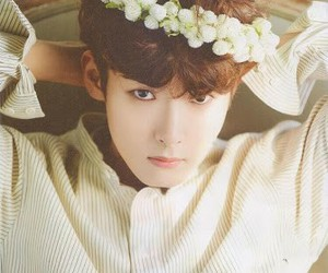 ryeowook, super junior, and kpop image