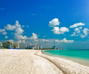 beach, Miami, and summer image