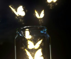 butterfly, light, and wallpaper image