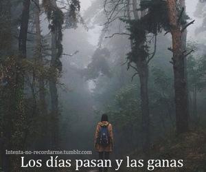 frases en español and frases image