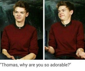 adorable, newt, and thomas image
