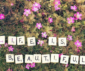 life, beautiful, and flowers image