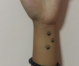 cat paws and tatto image