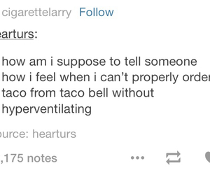 anxiety, speaking, and taco image