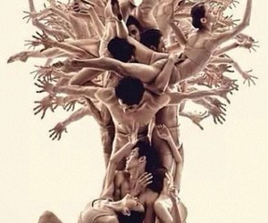 tree, dance, and art image