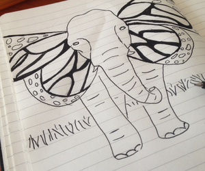 beautiful, drawing, and elephant image