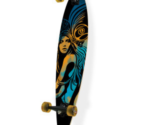 longboard, long board, and sector 9 image