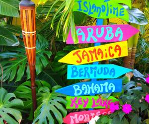 summer, beach, and jamaica image