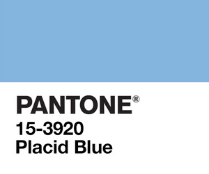 pantone and cute image