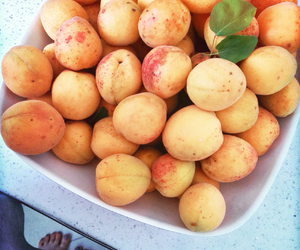 apricot, bio, and fit image