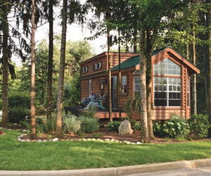 forest, house, and tiny house image