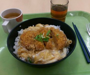 japanese food and oyakodon image