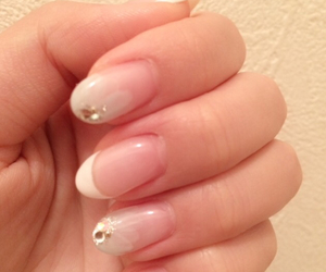 flower, french, and nail image
