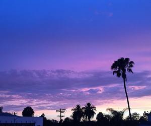 heaven, palms, and purple image