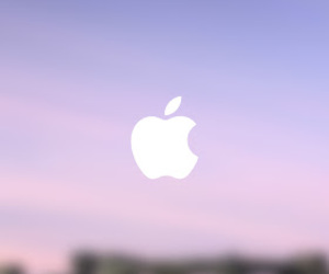 apple, wallpaper, and background image