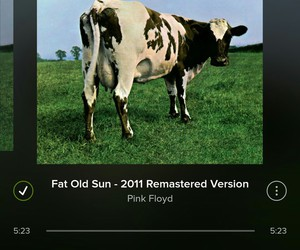 music, Pink Floyd, and atom heart mother image