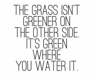 green, life, and quote image
