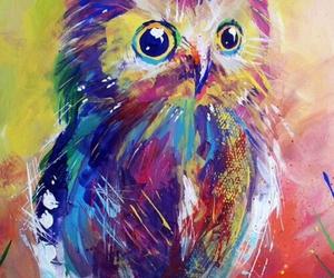 owl, wallpaper, and animal image