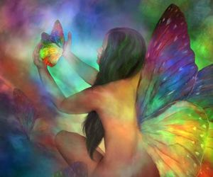 art, nature, and butterfly image