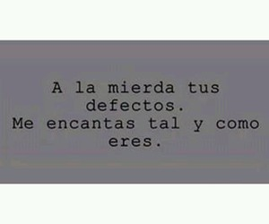 quotes, defectos, and frases image
