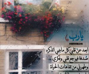 قمر, صباح الخير, and طبيعة image