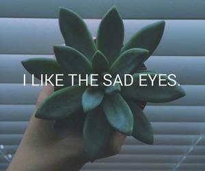 plants, eyes, and sad image