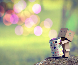 danbo and box image