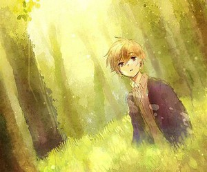 anime, boy, and forest image