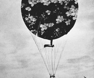 flowers, black and white, and balloons image