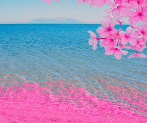 nice, pink, and beach image