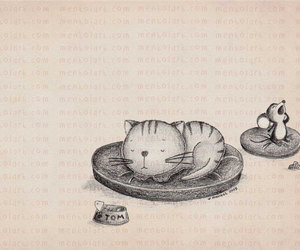 cat, drawing, and illustration image