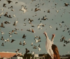 birds, girl, and vintage image