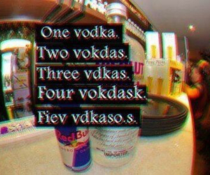 vodka, drunk, and alcohol image