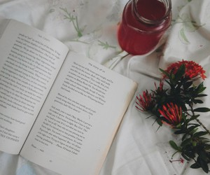 bed, bibliophile, and flower image