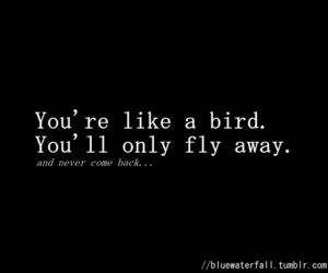 birds, him, and quote image