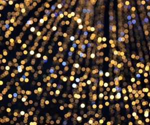 bokeh, christmas, and lights image