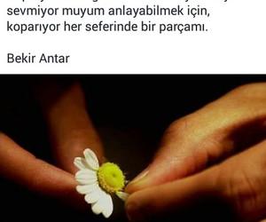ask, Turkish, and tumblr image