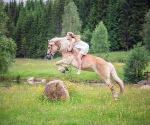 bareback, equestrian, and equine image