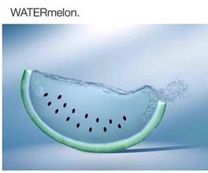 watermelon, funny, and water image