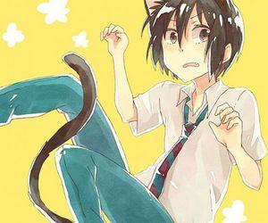 neko, anime boy, and tadakuni image