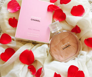 amazing, chance, and chanel image