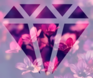 diamond, wallpaper, and flowers image