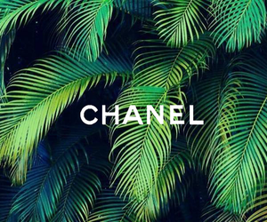 chanel, green, and summer image